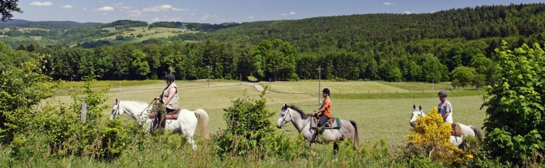 écotourisme, tourisme équestre, cheval
