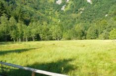 réserve naturelle du frankenthal missheimle Falimont