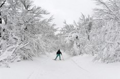 SkiFond_TroisFours_Benoit Facchi