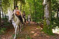 ecotourisme Clos Lery cheval équestre