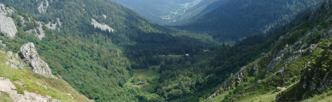 réserve naturelle  Frankenthal missheimle