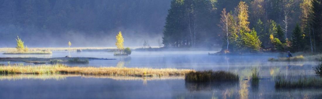 Lispach étang pêcheur