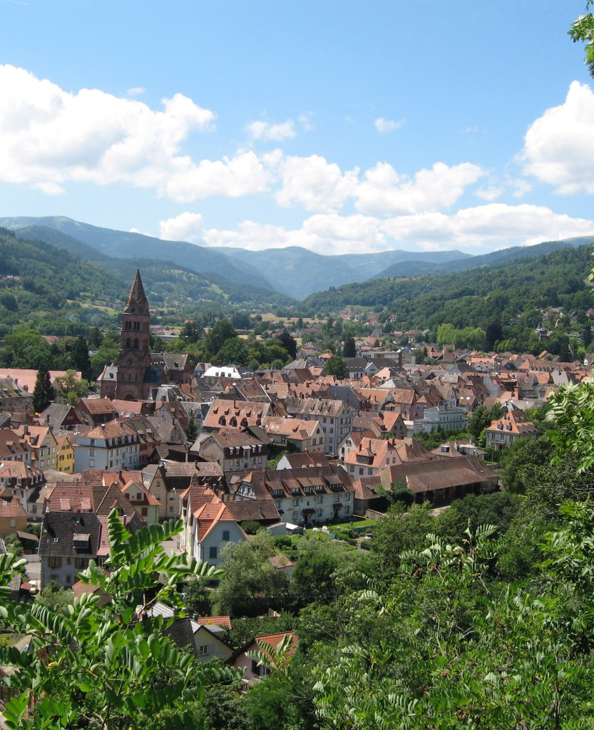 Office de tourisme de la vall e de munster - Office de tourisme de la vallee de kaysersberg ...