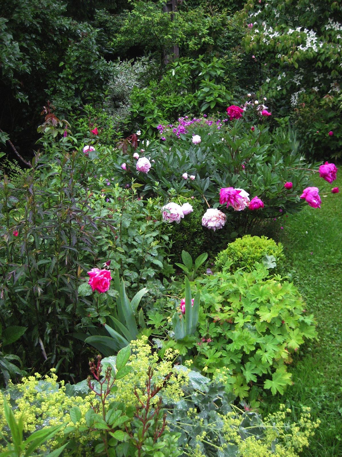 Parcs et jardins botaniques pnrbv for Jardin wesserling