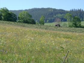 Agriculture Le Bonhomme tracteur