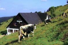 ferme auberge buchwald
