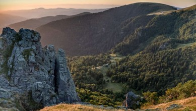 La Réserve naturelle du Frankenthal-Missheimle