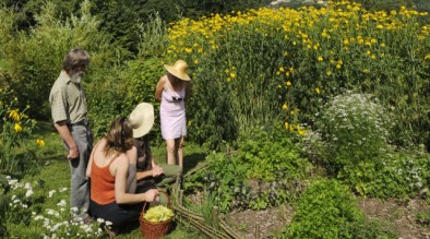 nl-jardins-denis-bringard-t7906