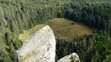 Reserve naturelle Frankenthal Missheimle