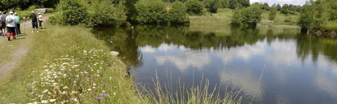 mille étangs - esmoulières