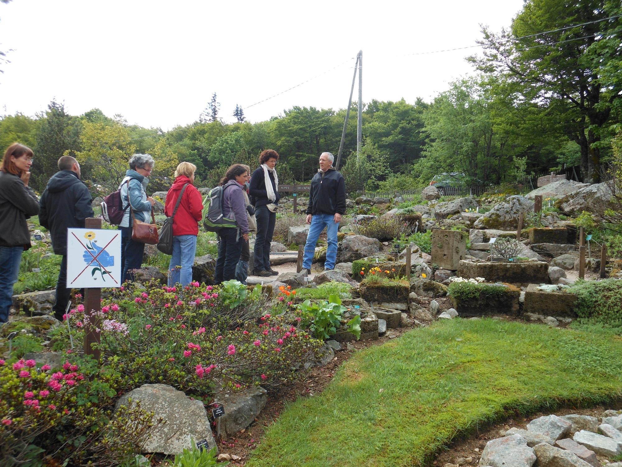 Le jardin d altitude du haut chitelet xonrupt longemer for Parc et jardin