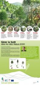 couv panneau 2 - Gérer la forêt dans les sites N2000