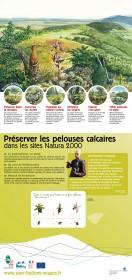 couv panneau 6 -  préserver les pelouses calcaires dans les sites N2000