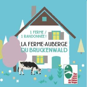 couv  1 ferme 1 randonnée bruckenwald