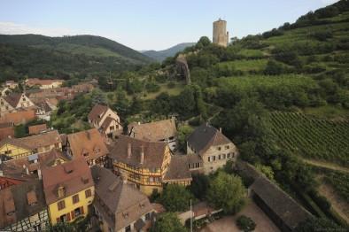 château Kaysersberg vignoble