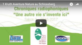 capture ecran you tube Chronique Radio Kruth
